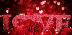 Valentines-Day-Rose-Petals-10